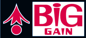 Big Gain Logo