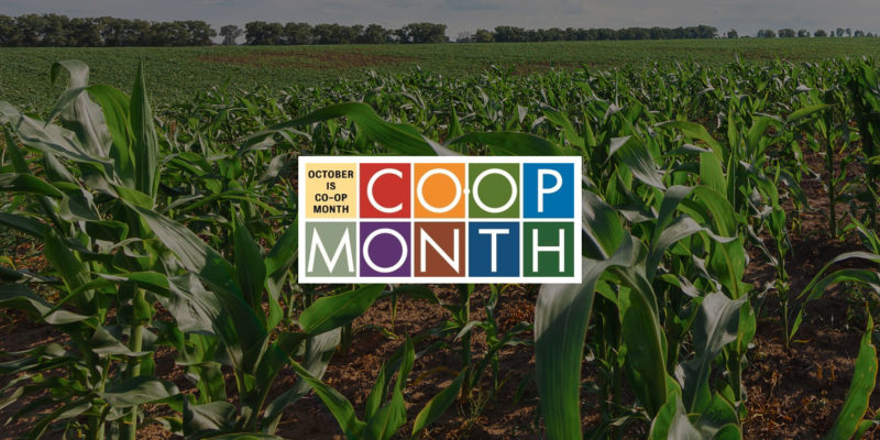 coop-month-bkgd